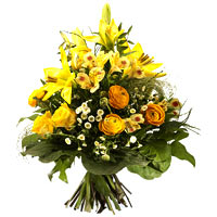 Scented Spring Yellow Lilies Set