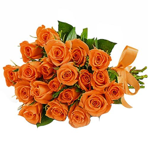 Send Roses to Germany, Low Cost