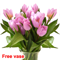20 lilac tulips in a bunch with vase