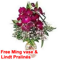 Ming Vase with Orchids and Lindt Pralin�s