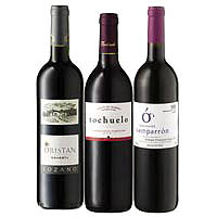 Exciting Spanish Gift of 3 Wines