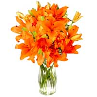Sophisticated 10 Orange Lilies